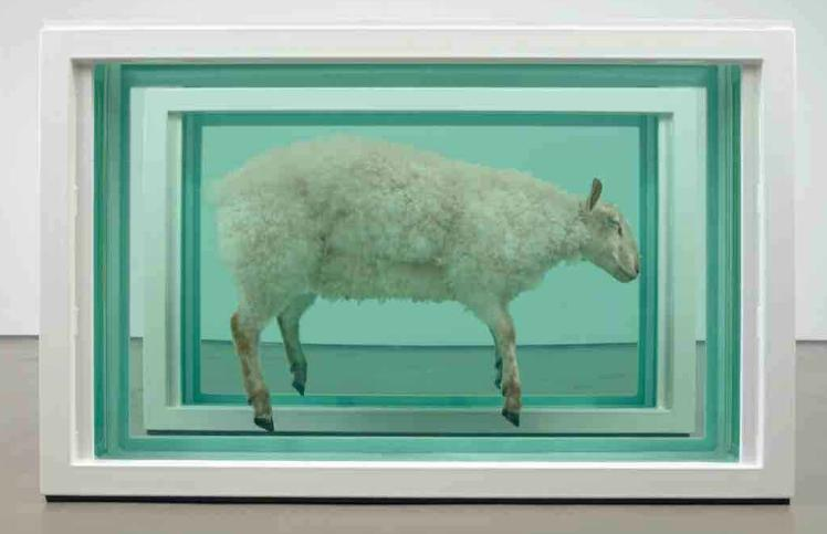 Damien Hirst: Away From the Flock (Divided) / 1995 / objekt – kombinovaná technika